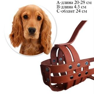 Кожаный намордник для Кокер-спаниеля, размер 24 см, прогулочный, натуральная кожа, изготовление на заказ