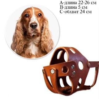 Кожаный намордник для Кокер-спаниеля, размер 26 см, прогулочный, натуральная кожа, изготовление на заказ