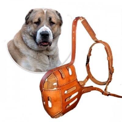 Кожаный намордник для Алабая, размер 38 см, прогулочный, натуральная кожа, изготовление на заказ