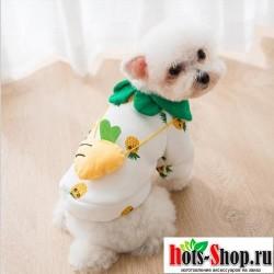 Одежда для щенков и собак комбинезон для животных мопс для маленьких средних собак бульдог 516545