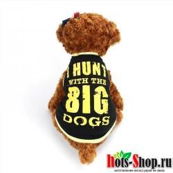 2017 Милая Одежда для собак, модная футболка, жилет для маленьких собак, одежда для чихуахуа, йоркширского милого щенка, повседневные трикотажные изделия 40
