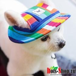 Кепка для собак с отверстиями для ушей для маленьких собак бейсболка для собак шапка для щенков головной убор кепка s 4