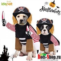 Горячие Хэллоуин для домашней Собаки Одежда для больших собак костюм корсаир наряды кошки вечерние женский косплей костюм пирата для средние и большие собаки
