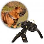 Кожаная шлейка для собак крупных и средних пород. Артикул: sh0007
