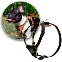 Шлейка для собак (sh0009)