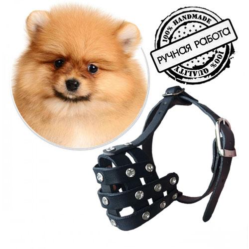 Намордник для собаки породы Японский шпиц. Цвет черный