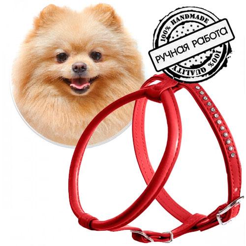 Шлейка для Шпица, круглая, красная